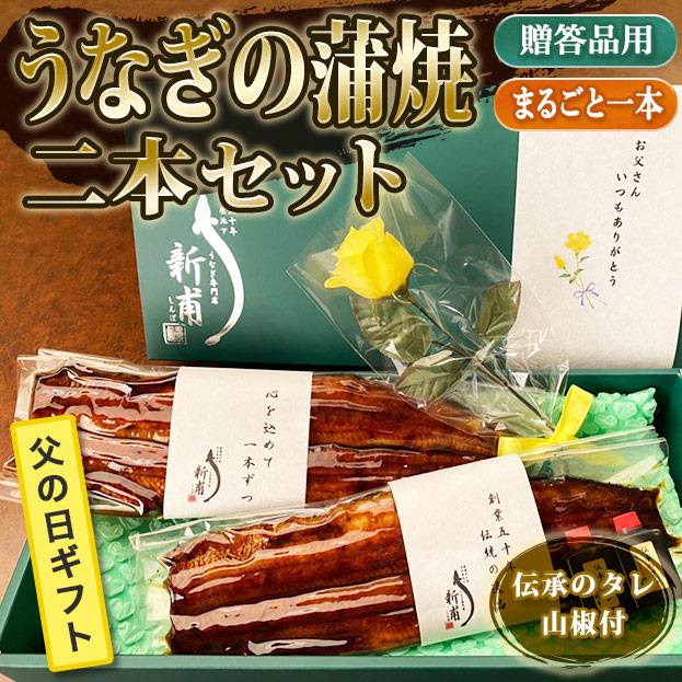 【父の日ギフト】うなぎの蒲焼二本セット 伝承のタレ・山椒付 FG-KL2